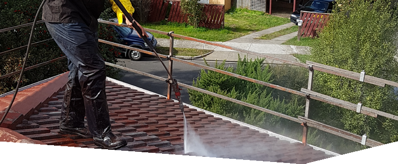 PRESSURE CLEANING / DE-MOSSING